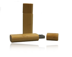 USB Stick Simply  Holz