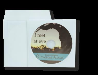 DVD-Kopien/Pressung in Papiertüte
